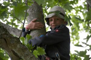 Peters Wald - Dokumentarfilm Grit Lemke